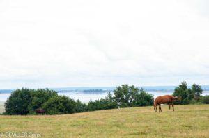 2021-08-15 Vacances en Bretage - St Gildas avec les enfants036.jpg
